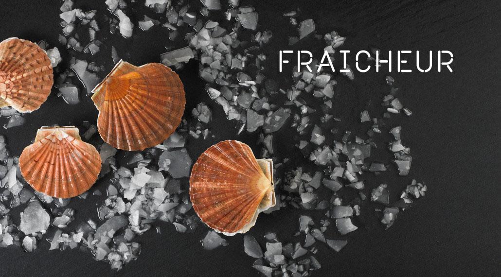 produits de la mer frais coquilles saint jacques